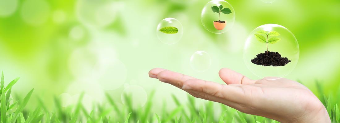 illustration Politique de développement durable