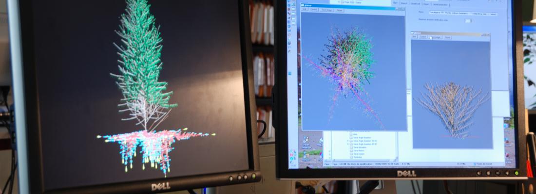 illustration Digital sciences and modelling